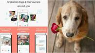 Crean-Tinder-para-perros