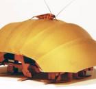 robot-inspirado-cucaracha
